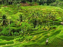 Tempat Wisata di Bali, Paling Menakjubkan untuk Dikunjungi 2021