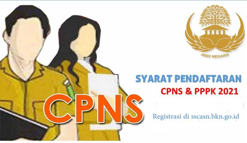 TERBARU, Syarat pendaftaran CPNS dan PPPK Tahun 2021