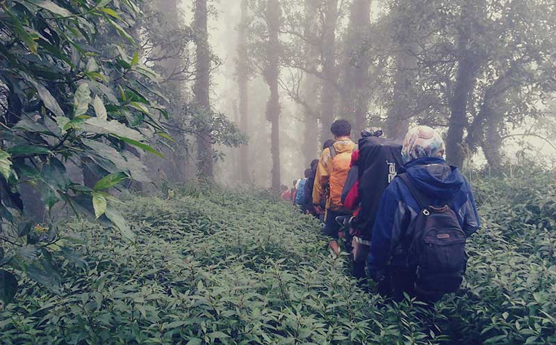 Mendaki Gunung Abang Bali, Ambil Jalur Aman ini