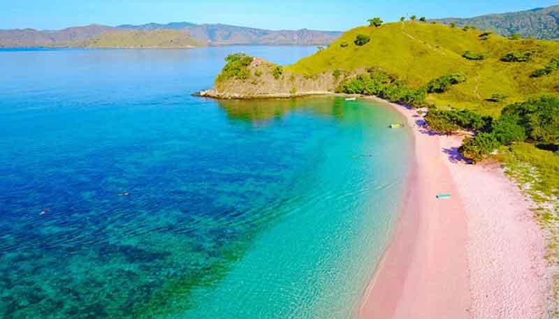 Keunikan Pantai Pink di Pulau Komodo