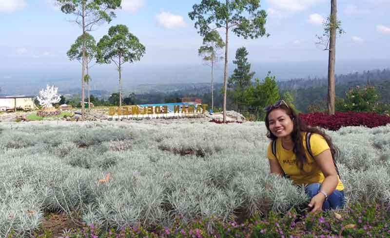 Taman Edelweis karangasem Bali, Spot foto yang Instagramable