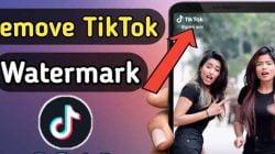 Cara Download Video Tiktok Tanpa Watermark 2021